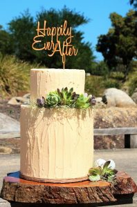 rustic wedding cake with succulents and air plants
